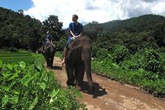 Ballade en pleine nature en Thailande