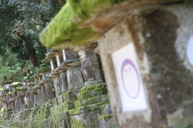 Lanternes en pierre à Nara