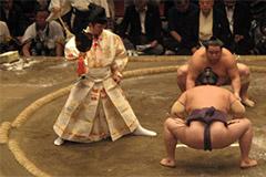 Appréciez un tournoi de sumo au Ryogoku Kokugikan