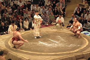 Tournoi de sumo au Ryogoku Kokugikan