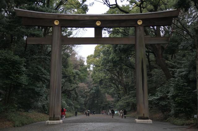 Torii du Meiji Jingu