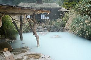 Bains extérieurs nippons