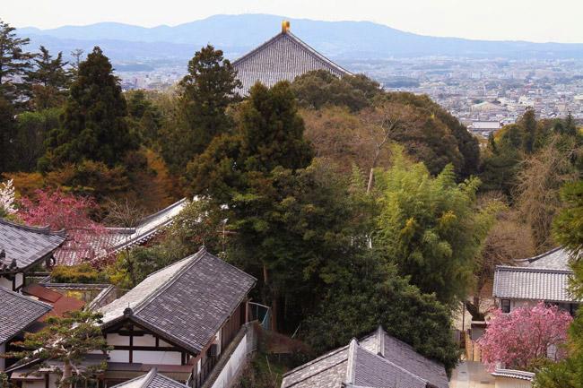 Vue sur le Todai-ji