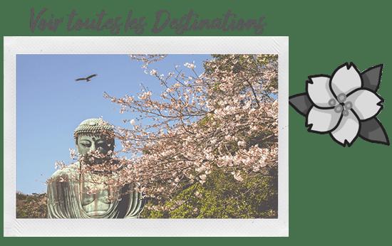 Période de sakura à Kamakura